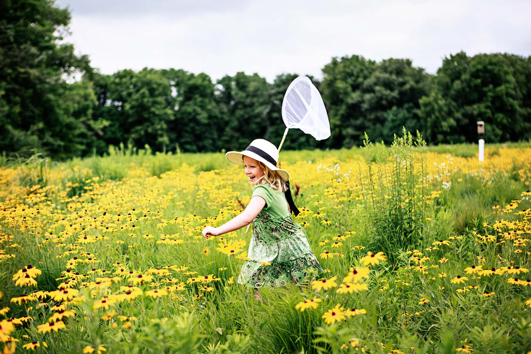 Young girl runs through field with a butterfly net, children