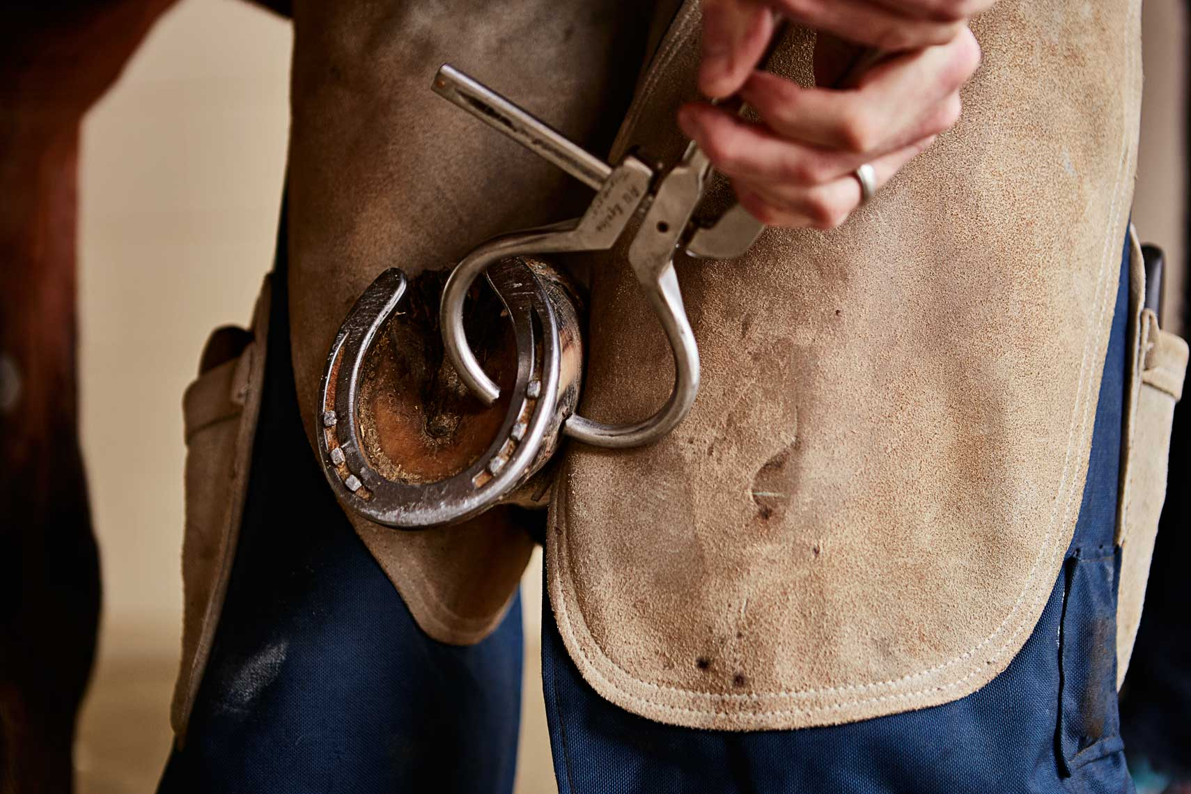 Advertising photograph of farrier shoeing horse in stables by Nick Burchell, photographer