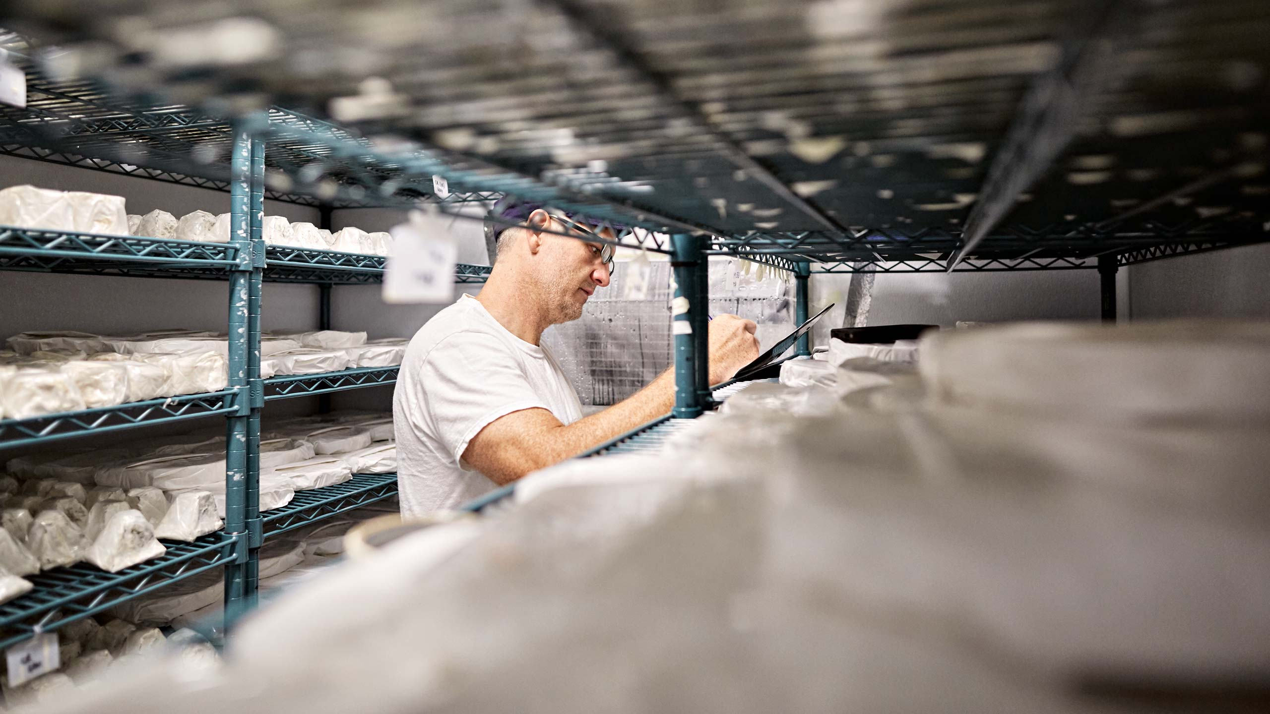 Cheesemaker checks on cheeses in Atlanta dairy. Nick Burchell photographer